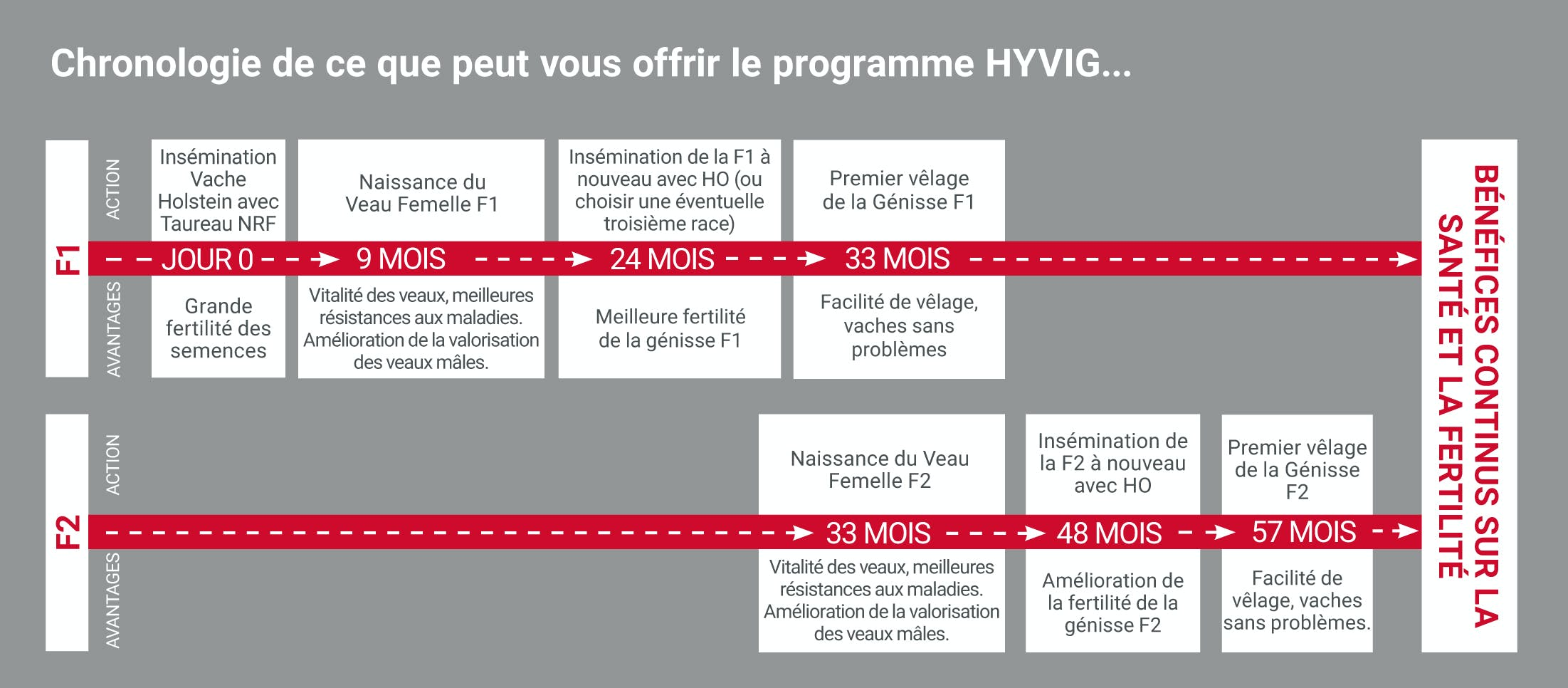 1106-french-hyvig-brochure-261016-5