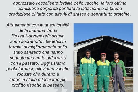 1111-italian-hyvig-brochure-241016-high-res-single-page-10